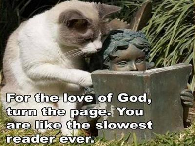FOR THE LOVE OF...TURN THE PAGE